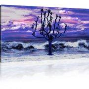 Baum an der Küste Wandbild