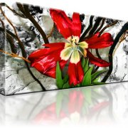 Blume Tulpe Wandbild