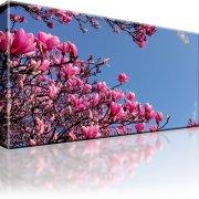 Magnolien Blumen Kunstdruck