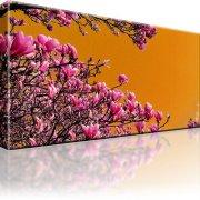 Magnolien Blumen Wandbild