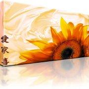 Sonnenblume Wandbild