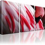 Flamingo Kunstdruck 3-Teilig: 105x60 cm | Mehrfarbig