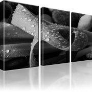 Blatt Tröpfchen Kunstdruck 3-Teilig: 105x60 cm | Schwarz-weiss