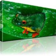 Frosch Kunstdruck
