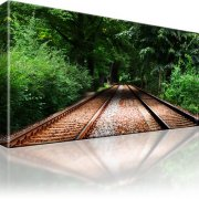 Gleise Wald Wandbild