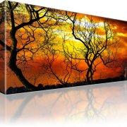 Bäume Horizont Bild auf Leinwand