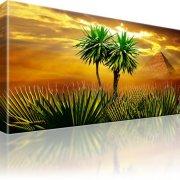 Afrika Palmen Pyramide Leinwandbild
