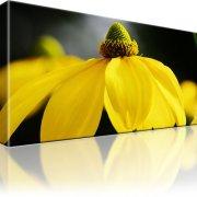 Blume Gelb Kunstdruck