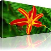 Tulpe Blumen Wandbild