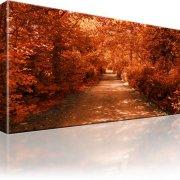 Allee Parka Herbst Leinwandbild