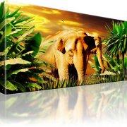Elefanten Afrika Wandbild