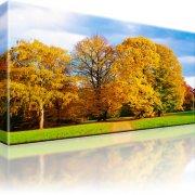 Park Wald Herbst Wandbild