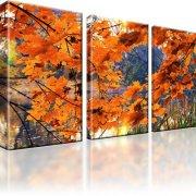 See Park Wald Herbst Wandbild 3-Teilig: 105x60 cm
