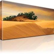 Dünen Kanarische Insel Maspalomas Bild auf Leinwand