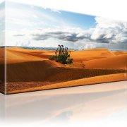 Dünen Kanarische Insel Maspalomas Wandbilder auf Leinwand Fotodruck