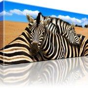 Zebra Tiere Afrika Dünen Wandbild