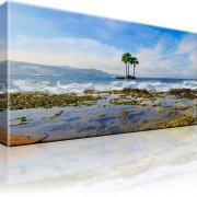 Palmen Las Palmas Atlantik Ozean Kunstdruck