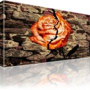Rose Abstrakt Mauer Bild auf Leinwand