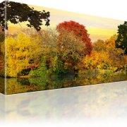 Wald See Herbst Wandbild