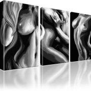 Erotik Akt Nude Wandbild 3-Teilig: 105x60 cm   Schwarz-Weiss
