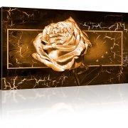 Goldene Rose Wandbilder auf Leinwand 1-Teilig: 100x55 cm | Sepia
