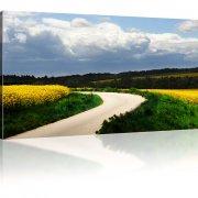 Der Weg Leinwandbild