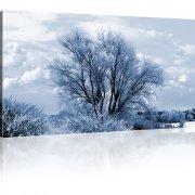 Baum im Winter als Kunstdruck