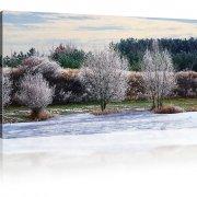 Bäume am Fluss im Winter als Kunstdruck