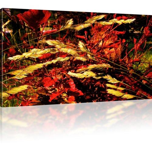 Weizen Natur Wandbild