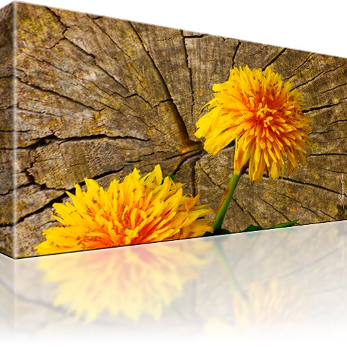 Pusteblume Blume Bild auf Leinwand