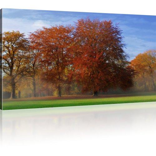 Park im Herbst als Kunstdruck