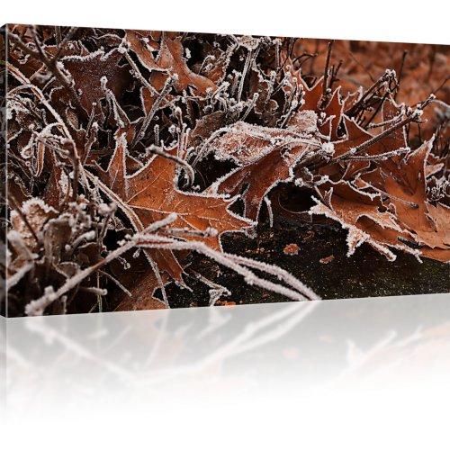 Welke Blätter mit Raureif als Kunstdruck