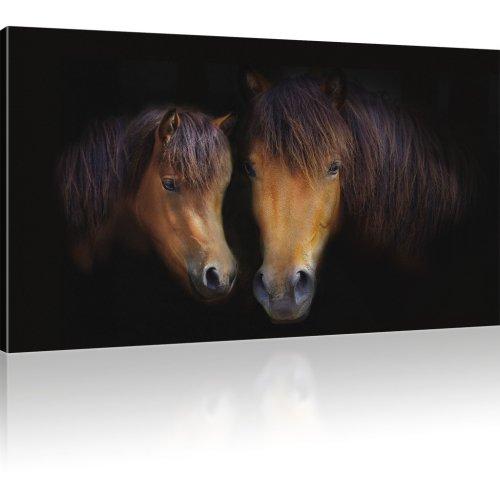 Pferde als Kunstdruck