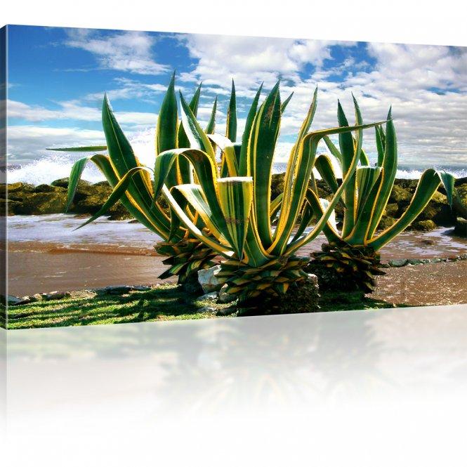 Pflanze Wandbild
