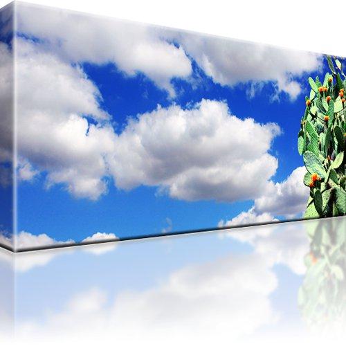 Kaktus Pflanze Himmel Wandbild