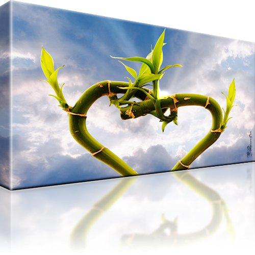 Pflanze Himmel Leinwandbild
