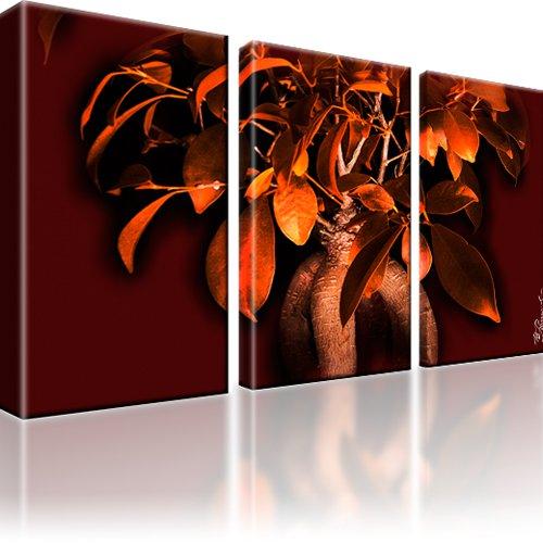Bonsai Baum Bild auf Leinwand 3-Teilig: 105x60 cm | Mehrfarbig