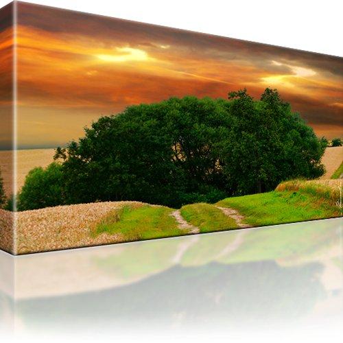 Landschaft Baum Kunstdruck 1-Teilig: 100x55 cm