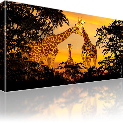 Giraffen Afrika Tiere Leinwandbild
