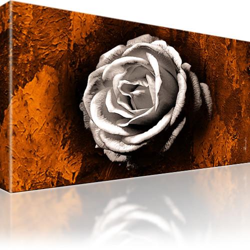 Rose Blume Abstrakt Wandbild auf Leinwand 1-Teilig: 100x55 cm | Weiss