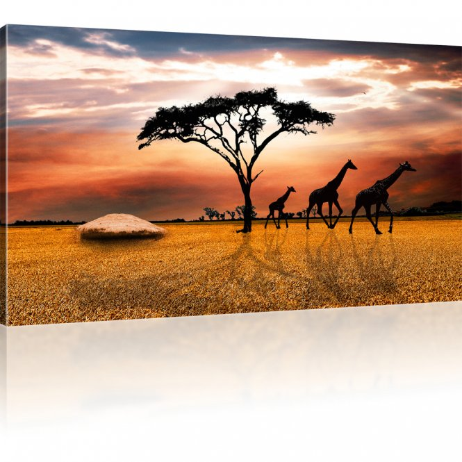 savanne in afrika bild auf leinwand. Black Bedroom Furniture Sets. Home Design Ideas