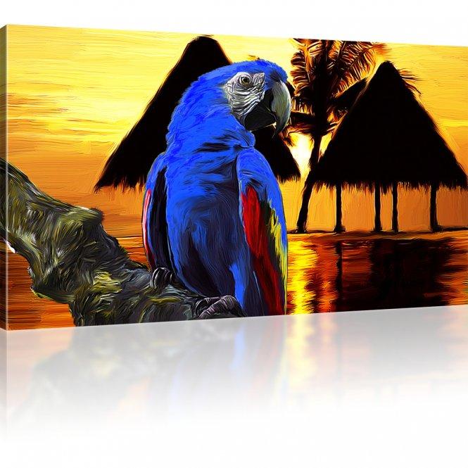 Papagei Ara Wandbilder