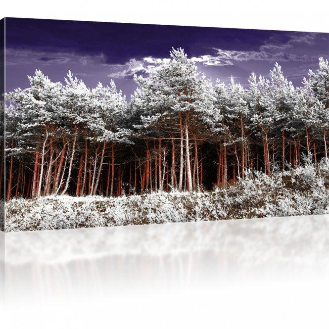 Wald Leinwanddruck