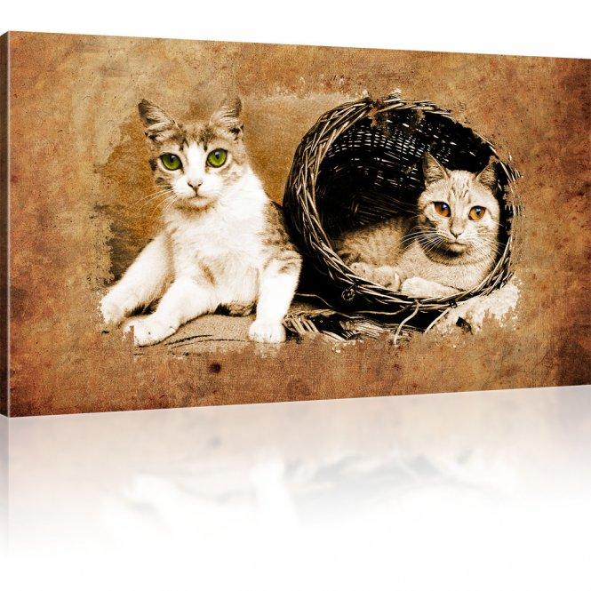 Wandbild mit katzen