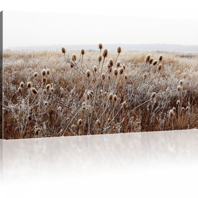 Wiese im Winternebel als Kunstdruck