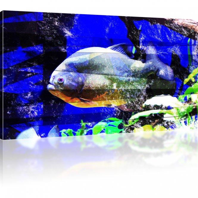 Korallenfisch Abstrakt als Kunstdruck
