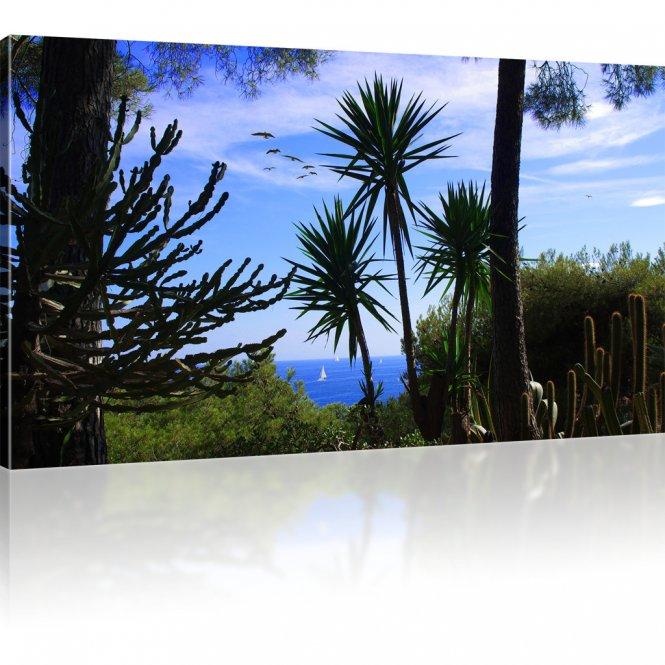 Palmen und Kakteen am Meer als Kunstdruck